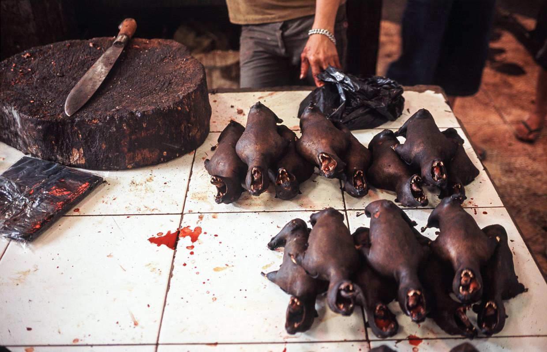 Op een markt in Sulawesi, Indonesië worden geroosterde vliegende vossen, een soort reuzenvleermuis, verkocht.De mix van uitwerpselen, bloed en urine op de markten voor wilde dieren biedt virussen een uitgelezen kans om van de ene soort op de andere te springen. Beeld Photo News