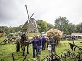 Het kan weer: oogstfeest bij Lonneker Molen gaat door
