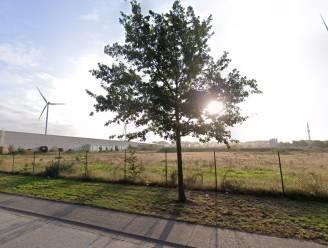 """Demir weigert vergunning voor gascentrale in Dilsen-Stokkem: """"Project is groter dan toegelaten"""""""