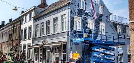 Wéér een nieuwe blikvanger: gigantische struisvogels aan de Willem II-straat