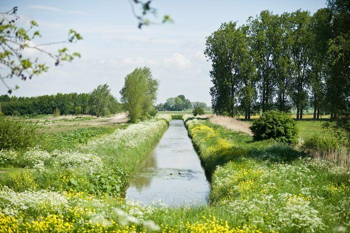 De route leidt onder meer langs natuurgebied De Westelijke Langstraat.