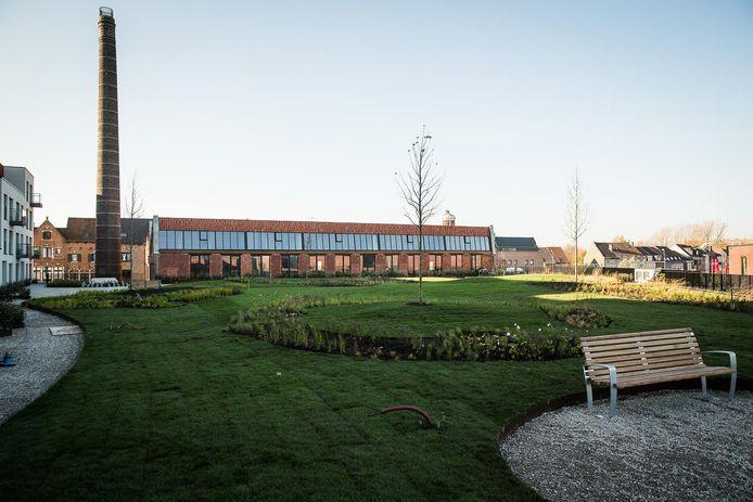 Langs de Nieuwevaart ligt - verborgen maar publiek toegankelijk - de grootste daktuin van Vlaanderen, bovenop onder meer de Lidl.