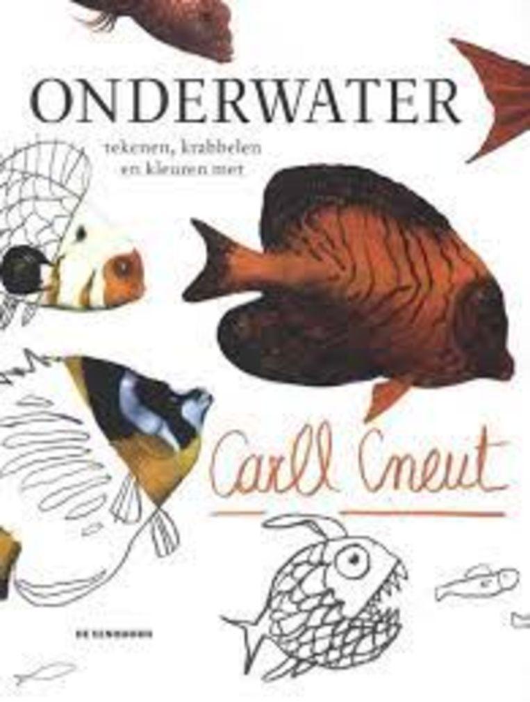 'Onderwater tekenen, kleuren en krabbelen met Carll Cneut', De Eenhoorn, 80 p., 18,95 euro, 3+. Beeld rv