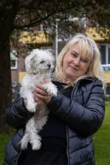 Vondst afgehakte hondenpootjes schokt Emmeloord: beloning voor gouden tip