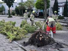 Storm in Zeeland: waterschap stelt dijkbewaking in, verzekeraar noteert 150 claims