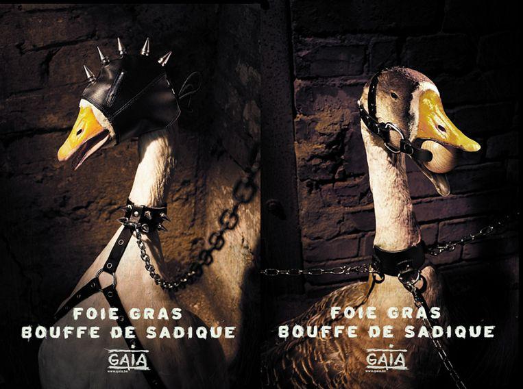 Campagne van Gaia tegen foie gras. Beeld RV