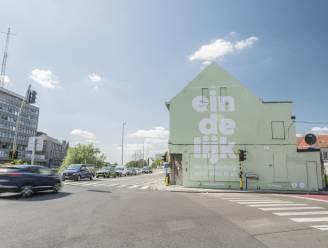 """Nieuwe muurschildering aan Palinghuizen zuivert de lucht: """"Een extra paar longen voor de stad"""""""