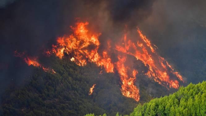 Bosbrand bedreigt Griekse Olympia, bakermat van Olympische Spelen
