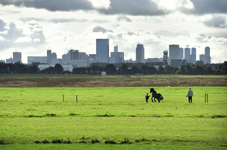 Zicht op Rotterdam, een van de steden die alleen nog kunnen groeien ten koste van natuurgebieden.