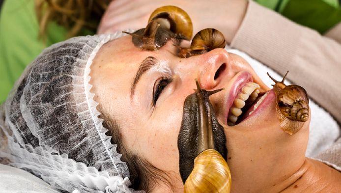 Slakken op je gezicht laten rondkruipen schijnt goed te zijn voor puistjes en rimpels.