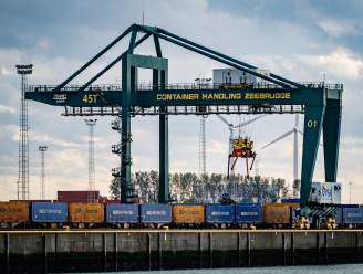 """Vijf transmigranten in Zeebrugge uit container gehaald: """"Levensgevaarlijke situatie"""""""