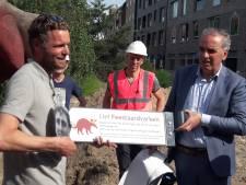 Permanente herinnering aan Feestaardvarken in Bartokpark; 'Arnhem heeft het kunstwerk omarmd'