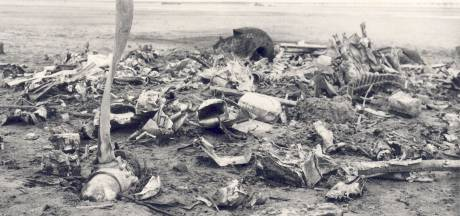 Een van de laatste ooggetuigen: weinig mis met crashpalen in de polder