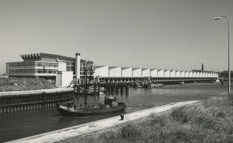 De Visafslag van architect Sjoerd Schamhart, die in 2019 een jong rijksmonument werd. Het witte beton van de bedrijfsruimtes met sheddaken werd na verloop van tijd donkergrijs Beeld Gemeentearchief Den Haag