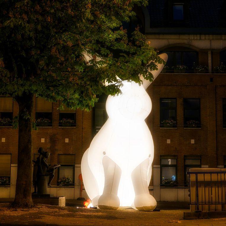Wie of wat zit achter dit mysterieus konijn?