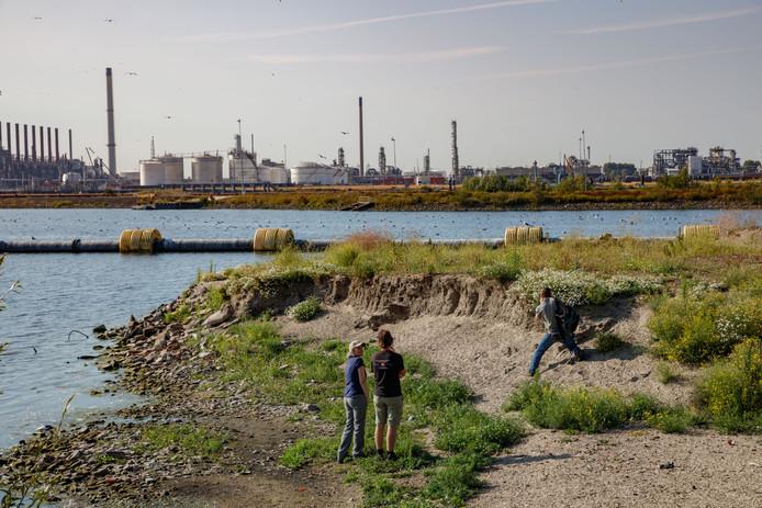 Filmmakers scouten natuur in haven- en industriegebied Moerdijk voor de bioscoopfilm De Nieuwe Wildernis 2. Op die plek komen industrie en natuur op een unieke manier samen.