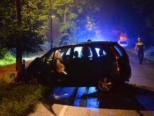 Vrouw gewond bij botsing tegen boom in Breda