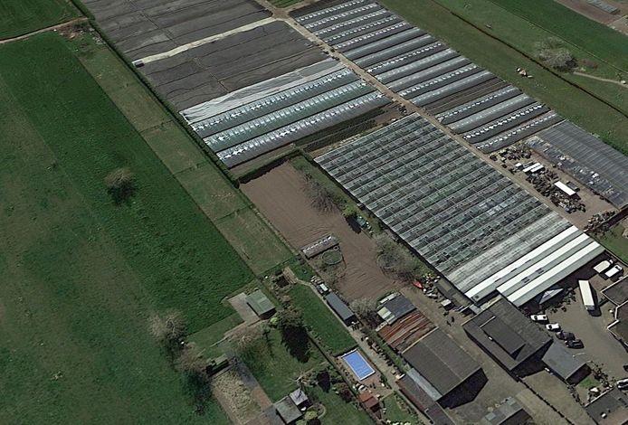 Een deel van het terrein van bloemenkwekerij Van Koolwijk aan de Voorstraat in Velddriel.