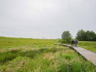 Bijna veertig hectare aan nieuwe toegankelijke natuur naast de R0 in Zellik