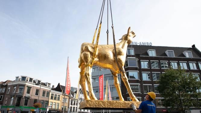 Het Gouden Kalf op de Neude is klaar voor het Nederlands Film Festival