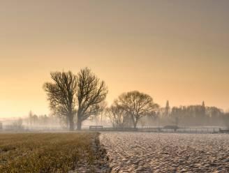 Geen officiële koudegolf: kwik steeg tot 0,2 graden in Ukkel