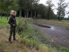 De bodem als vergiet, langzaam droogt het landgoed uit
