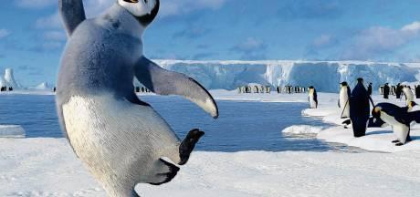 Brrrr, pas op voor onderkoeling met deze ijskoude kijk- en luistertips!