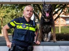 Waar politiehond Biko (7,5) en zijn baas Karel (43) zijn, is ellende: 'Angst heb ik niet, nooit gehad ook'