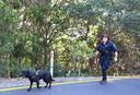 Een politieagent helpt met zijn hond Théo te zoeken.