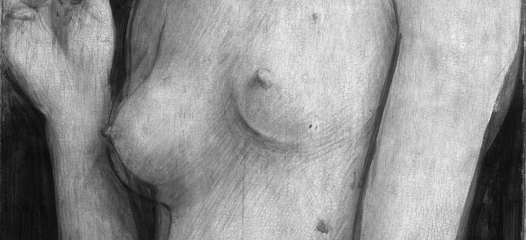 Detail uit de onderlaag van het paneel 'Eva' van 'Het Lam Gods' door de gebroeders Van Eyck, zoals te zien met infraroodreflectologieën op de website 'Closer to Van Eyck'. Beeld closertovaneyck.be