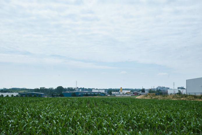 Aan het Soldatenplein wil provincie Vlaams-Brabant 47 hectare reserveren voor de ontwikkeling van een bedrijvenzone aansluitend op het huidige bedrijventerrein.