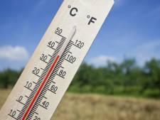 Teruglezen | Eindhoven de warmste met 39,3 graden gemeten en wegwerkers krijgen ijsjes