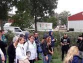Wake voor 20.000 dode varkens in Erichem