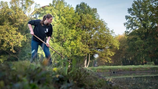 Antwerpse jongeren verdienen 1.375 euro tijdens YOUCA Action Day