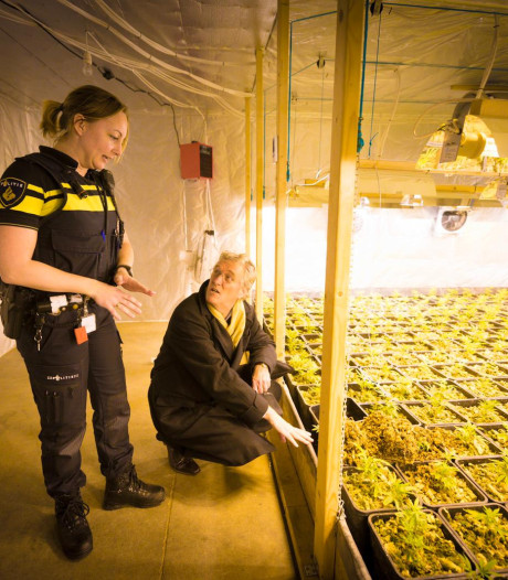 Politie ontdekt 'per toeval' zeer professionele hennepfabriek in Eindhoven