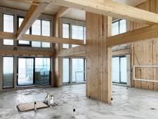 Roep om meer hout in woningbouw zwelt aan