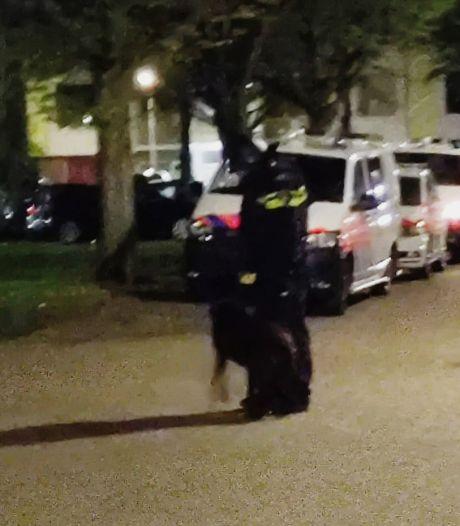 Goesenaar vernielt voordeur van buurman met klauwhamer en bedreigt agenten
