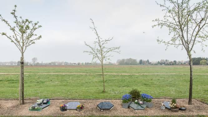 Natuurbegraafplaats Drongen is klaar, ook Vinderhoutse bossen krijgt er één
