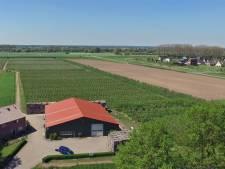 Fruitteeltbedrijf in Olst in delen verkocht, areaal met fruitbomen fors kleiner