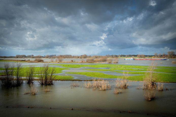 De natuur in de uiterwaarden tussen Heerewaarden en Wamel moet worden versterkt, menen Rijkswaterstaat, Staatsbosbeheer en de provincie Gelderland.