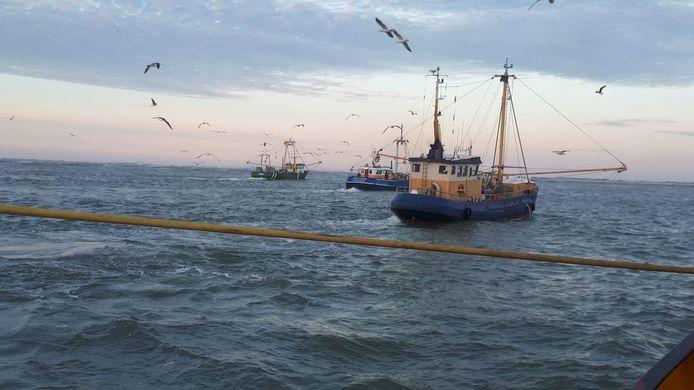 21 vissersboten uit Groningen en Friesland hielpen mee in de zoektocht naar een vermist Duits meisje van 14, voor de kust van Ameland. Hier het uitzicht vanaf de boot van Johan Rispens.
