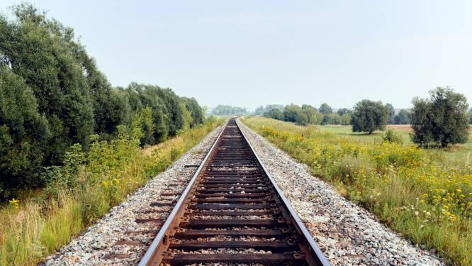 Vrouw ziet hoe haar man en hond door trein gegrepen worden