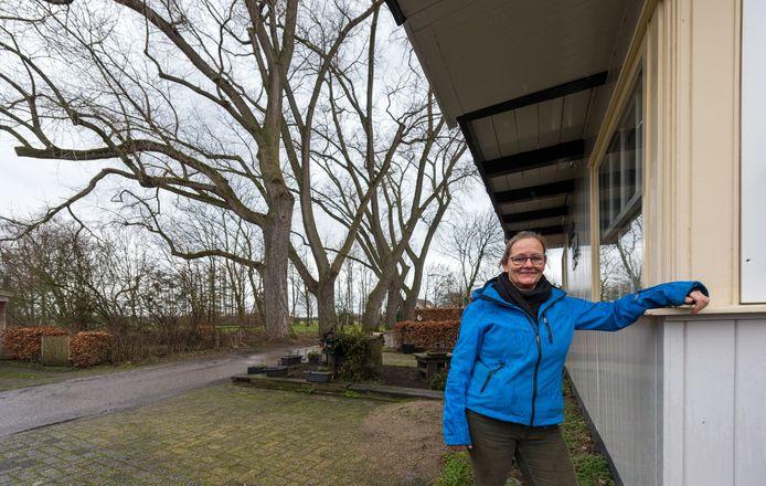 Nicky Beekmans voor haar huis bij de vijf bomen die de gemeente wil kappen  aan de Leeuwerikstraat in Oirschot.
