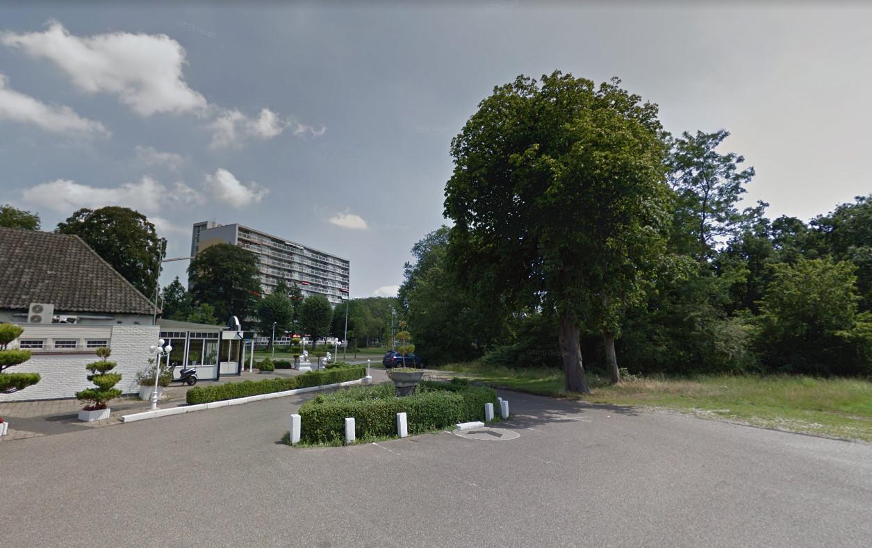 De kastanje op archiefbeelden van Google Streetview, in 2015.
