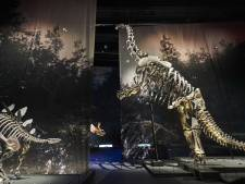 Naturalis is Europees museum van het jaar