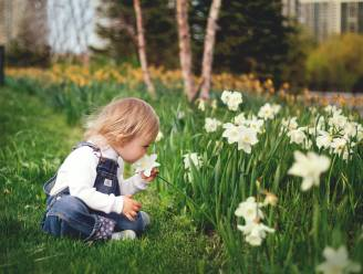 Het wordt volop lente dit weekend: kwik kan volgende week zelfs stijgen tot 20 graden (!)