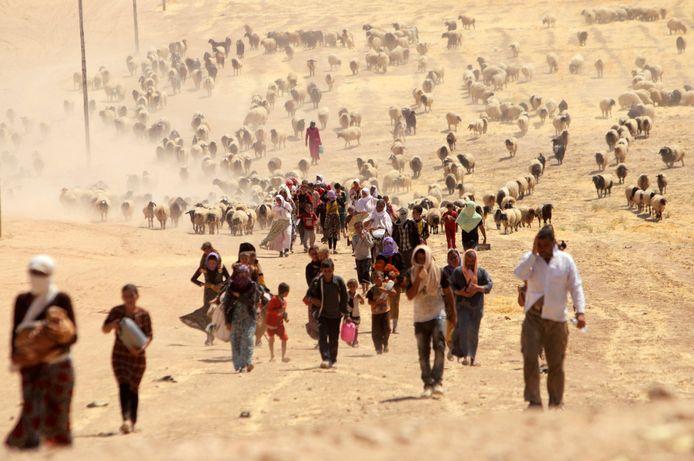 Jezidi's op de vlucht