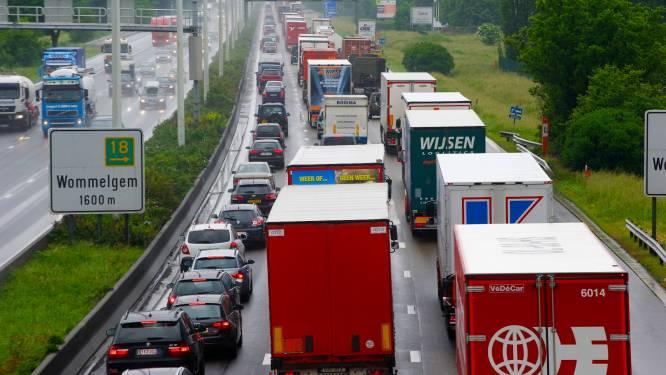 Uur aanschuiven op E313 richting Antwerpen door ongeval in Wommelgem