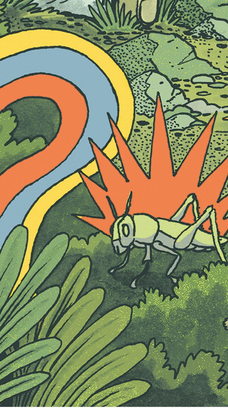Illustratie bij rubriek 'Doof' door Manon Spierenburg. Illustratie © Douwe Dijkstra Beeld Douwe Dijkstra