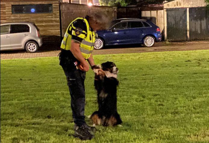 De viervoeter kreeg al snel een goede verstandhouding met één van de agenten.